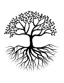 Vector illustration of Tree silhouette with root