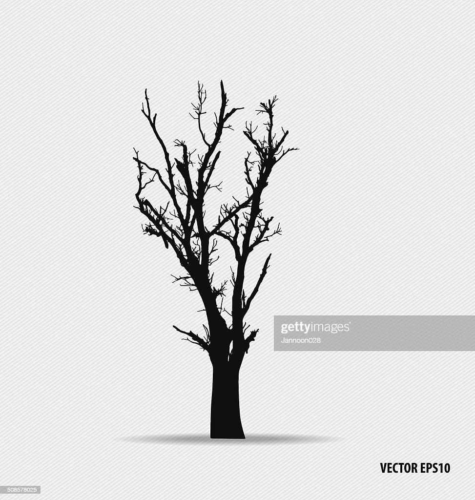 Baum Silhouetten. Vektor-illustration. : Vektorgrafik