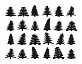 Set of twenty four different dark silhouettes of pines on a white background. Vector illustration
