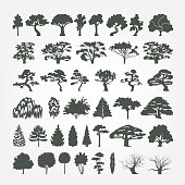 Set of silhouettes of trees. Silhouettes of different dark trees on a light background. Collection of isolated vector trees.