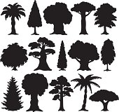 Isolated black silhouette various trees on white background
