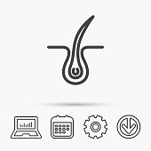 Trichology skin icon. Dermatology hair sign. Notebook, Calendar and Cogwheel signs. Download arrow web icon. Vector