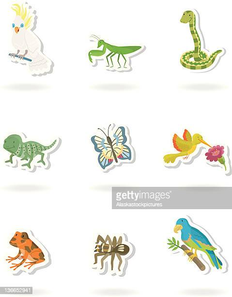tropical animal sticker.