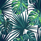 Tropical background with jungle plants. Seamless tropical pattern with green sabal palm and monstera leaves. Vector illustration.