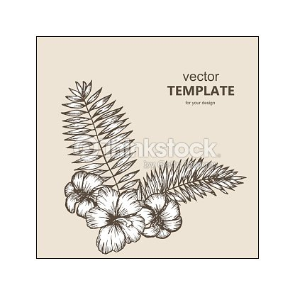 Tropical background with tropical leaves and flowers. Exotic