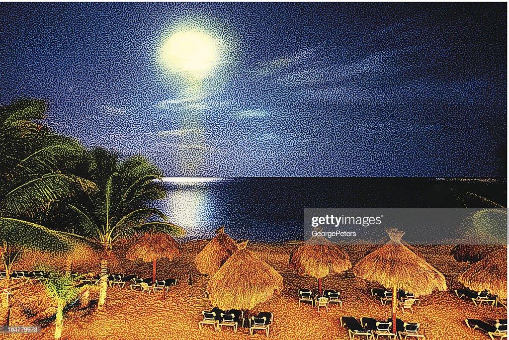Tropical Beach And Moonlight : Vector Art