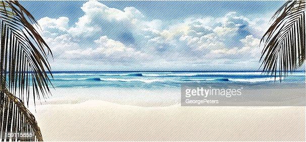 Tropical Beach and Palm Trees : Vector Art