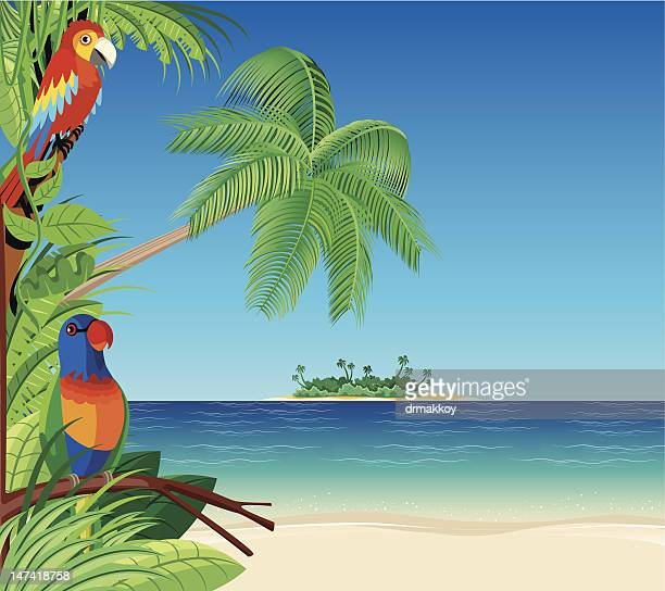 Deserted Island Beach: Desert Island Stock Illustrations And Cartoons