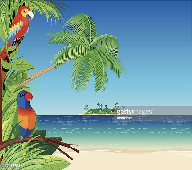 Desert Island Beach: Desert Island Stock Illustrations And Cartoons