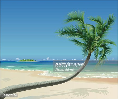 Tropical Beach with Palmtree : Vectorkunst