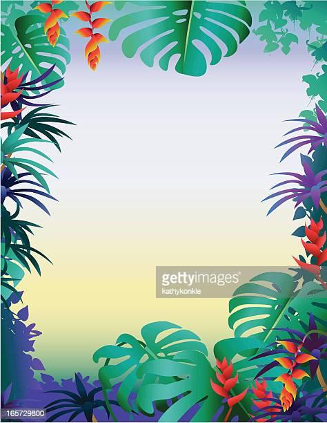 Tropische Grenze