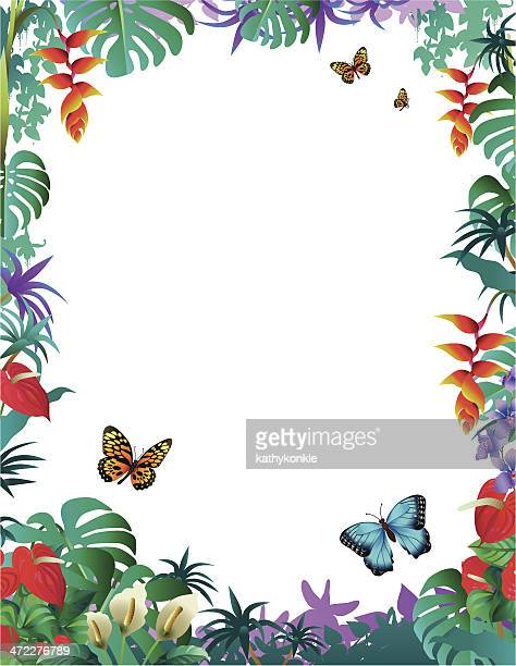 Tropische Grenze mit Schmetterlingen