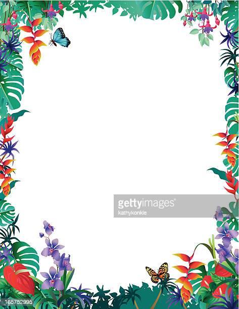 Tropische Grenze mit Orchideen