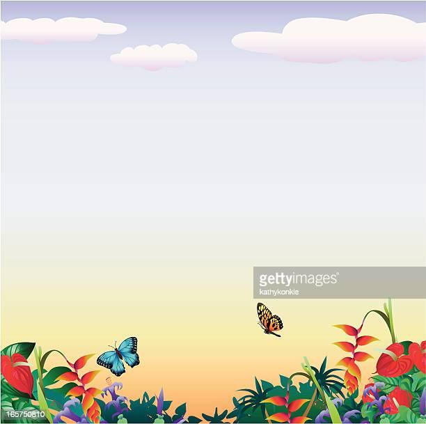 Tropische Schmetterlinge mit copyspace