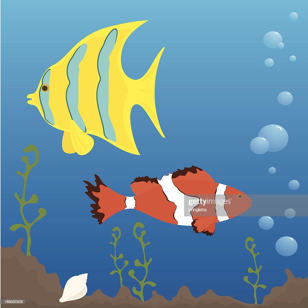 Tropical Fish - incl. jpeg : Vector Art