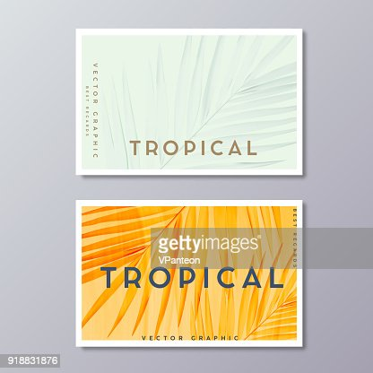 Tropical florals and foliage, botanical, bohemian business card templates. Minimalist wedding postcard design. Palm leaves decoration. : stock vector