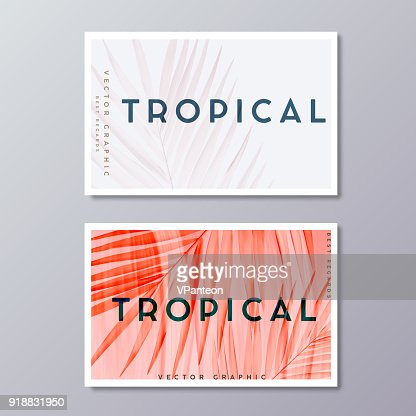 Tropical florals and foliage, botanical business card templates. Minimalist wedding postcard design. Palm leaves decoration, vector illustration. : stock vector