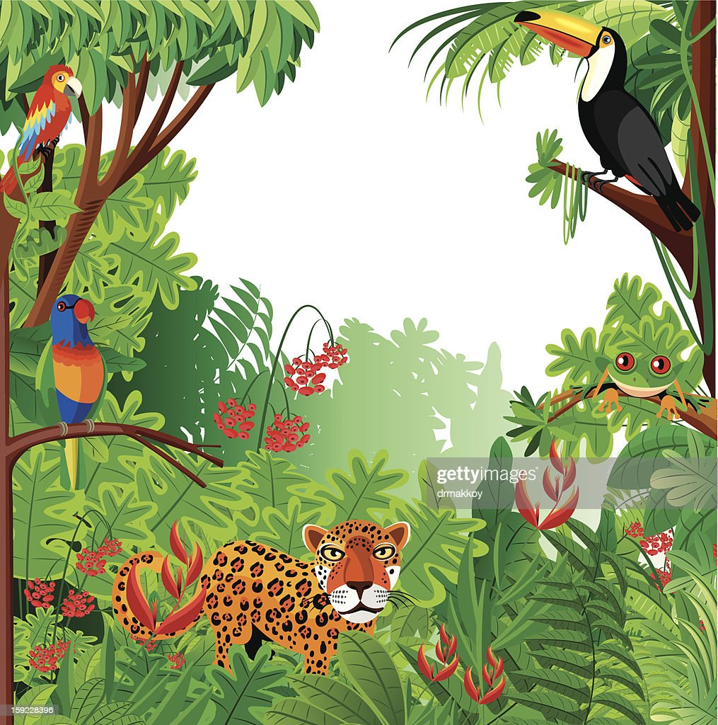 Tropical forest : Vector Art