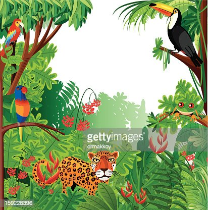 Tropical forest : Vector Art