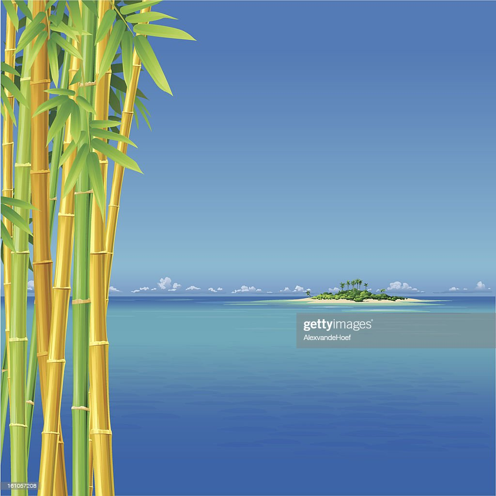 Isla Tropical y bambú mar : Arte vectorial