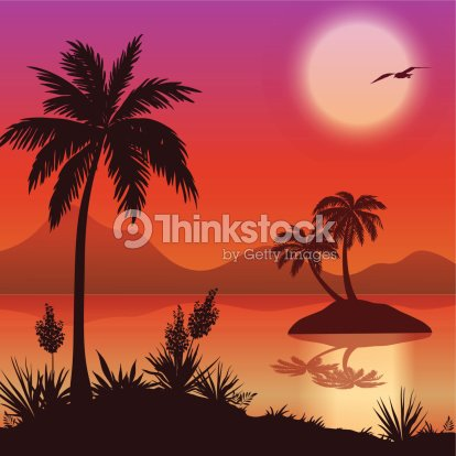Iles Tropicales De Palmiers Des Fleurs Et Des Oiseaux Clipart