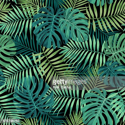 Tropical Leaf Pattern in Green : stock vector