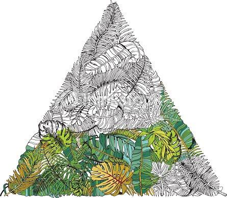 Hojas De Palma Tropical En Círculo Fondo De Las Hojas Ilustración De ...