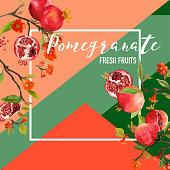 Tropical Pomegranate Fruits and Flowers Summer Banner, Graphic Background, Exotic Floral Invitation, Flyer or Card. Modern Front Page in Vector