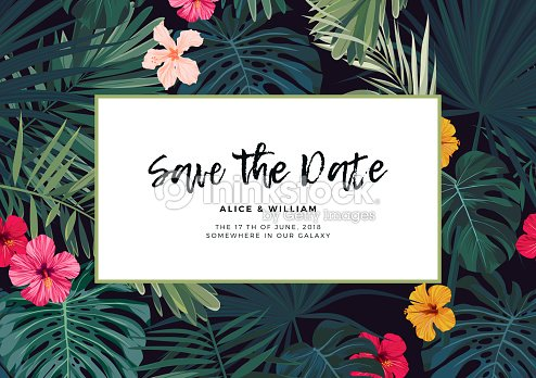 Tropical vector wedding invitation design with hibiscus flowers and tropical vector wedding invitation design with hibiscus flowers and exotic palm leaves on dark background stopboris Image collections