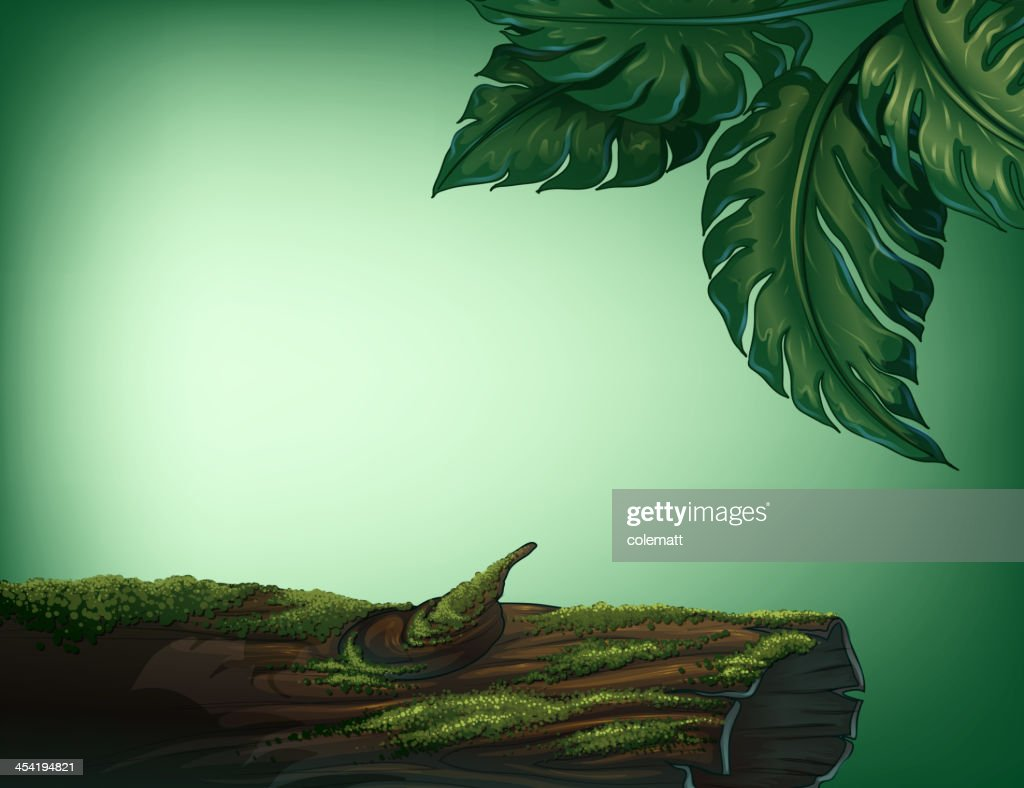 Trunk covered with algae : Vector Art
