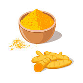 Turmeric root with powder in bowl. Curcima spice. Curcumin isolated on white background. Vector illustration flat design