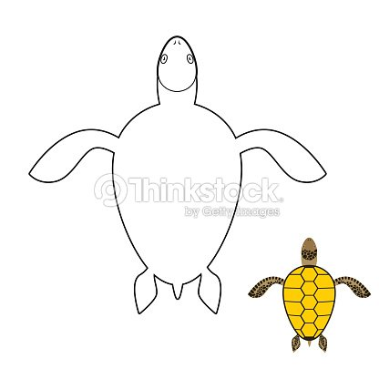 Turtle Coloring Book Marine Reptiles Vector Illustration Vector Art ...