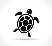 Illustration of turtle icon on white background