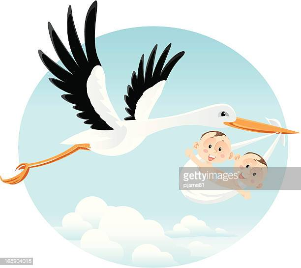 stork stock illustrations and cartoons