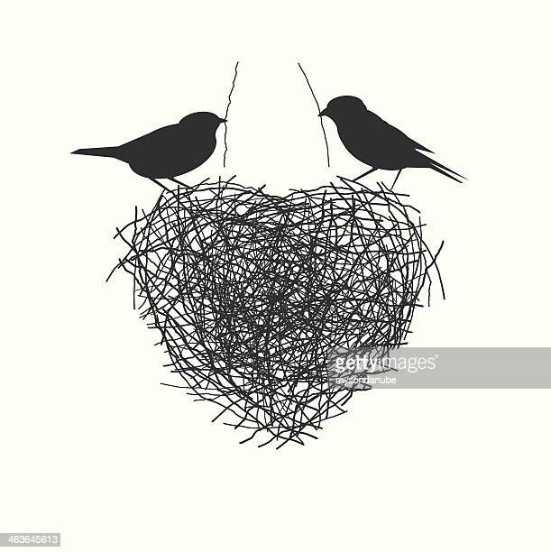 two birds making heir nest