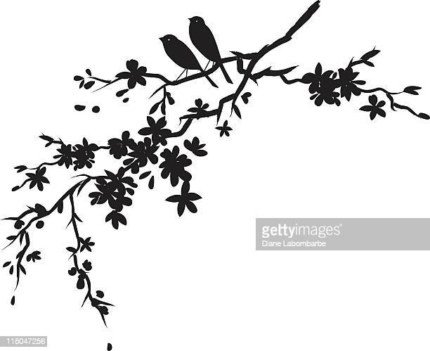 Two little birds sitting on Cherry blossoms branch black silhouette