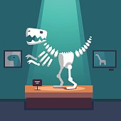 Tyrannosaurus dinosaur skeleton at archeology museum exposition room. Lit with spot light. Modern flat style vector illustration cartoon clipart.