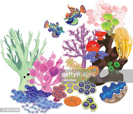 underwater coral reef with fish on white background vector