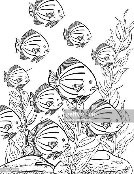 Underwater School Of Fish Adult Coloring Book Page