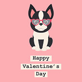 Boston terrier puppy in heart shaped glasses. Romantic Valentine's Day greeting card template