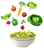Variety of salad in a bowl illustration