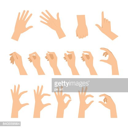 Various gestures of human hands isolated on a white background. : Vector Art