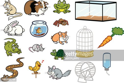 Various Pet Store Animals And Cages Vector Art