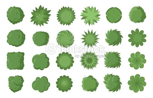Free D House Plant Top View Vector Transparencies on