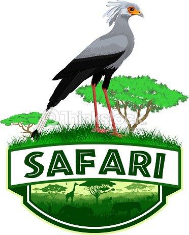 Vector african savannah safari emblem with secretary bird (Sagittarius serpentarius)