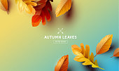 Autumn season background with falling autumn leaves and room for text. Vector illustration