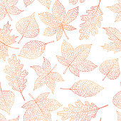 Vector autumn seamless pattern with oak, poplar, beech, maple, aspen and horse chestnut leaves outline on the white background. Fall line art of foliage.