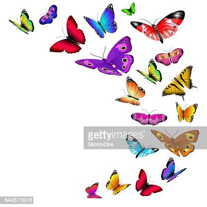 Vector background with flying butterflies : Vector Art