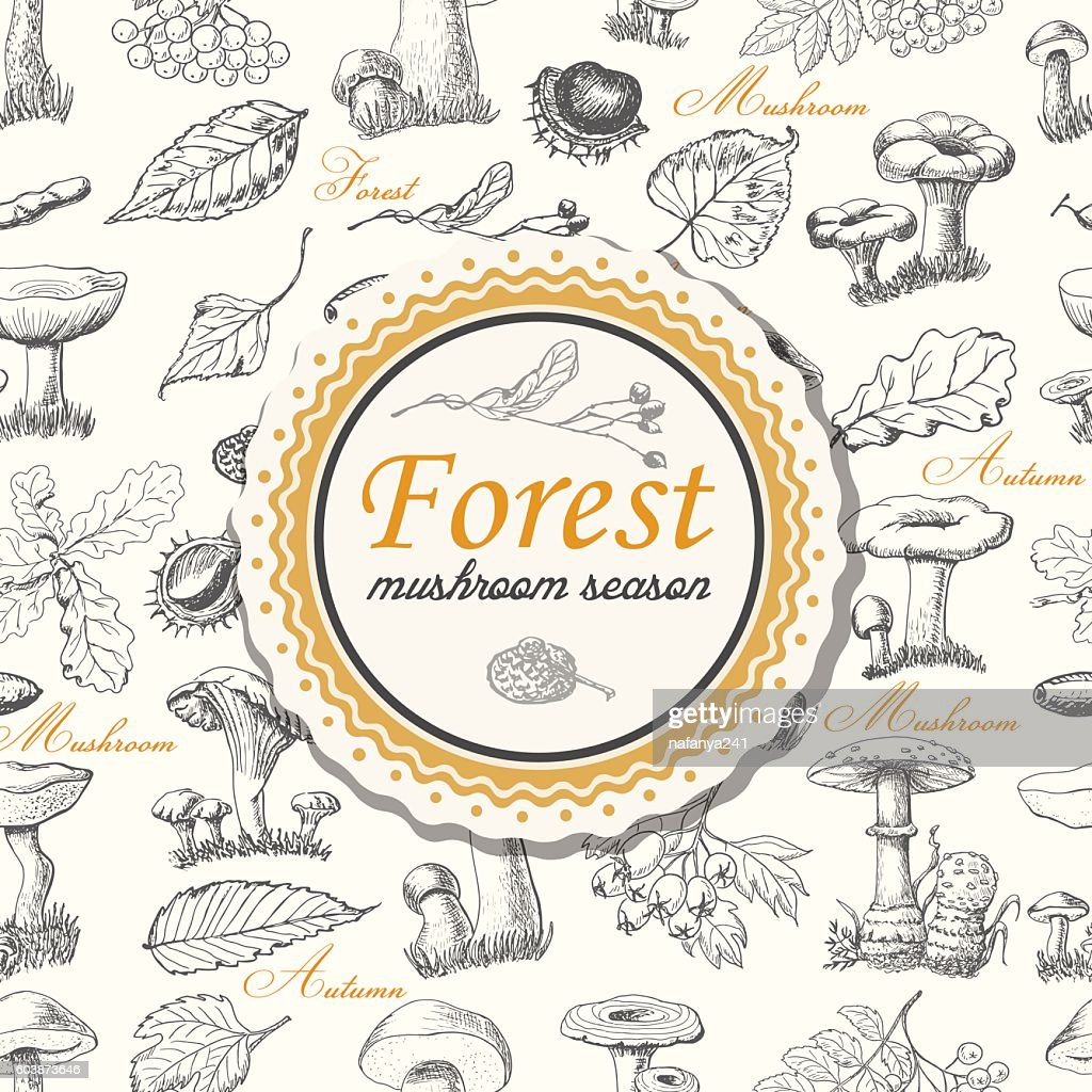 Vector background with forest plants and mushrooms