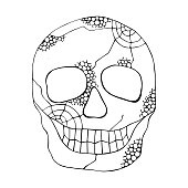 Vector black and white hand drawn illustration of smiling skull with spider web, tooth, lines face of human Print horror for t shirt. Mexican style, day of the dead, halloween Sketch, doodle drawing.